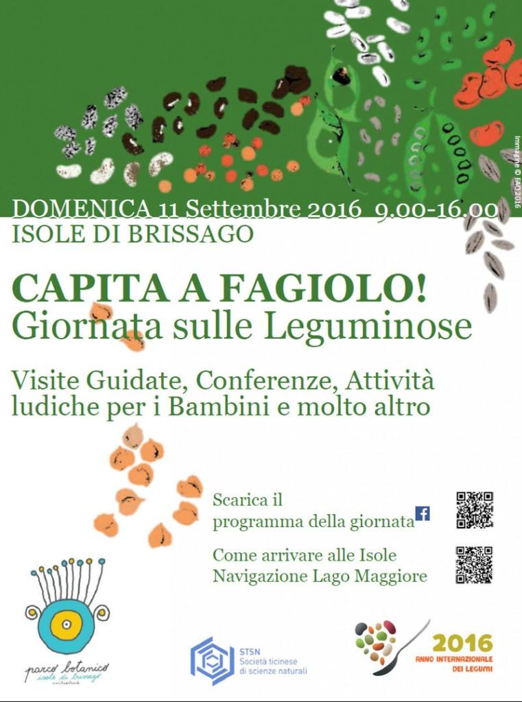 capita_fagiolo